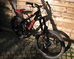 Alutech Hardtail DH Mountainbike
