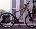 Fatmodul All Mountain HT Custom