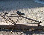 Leaf Cycles Charlston Rahmen RAW
