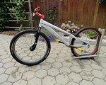 Steinbock Trial Bike