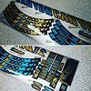Canyon Spectral CF decal