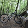 Specialized Enduro 29 RAW L mit 2 Wippen / Rolling chassis