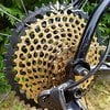 Ritchey P-29 XX1 Eagle, S-Works RS-1Brain, Carbon LRS, Guide Ultimate