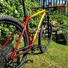 Specialized Epic HT Expert '19