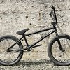 Wethepeople Wtp Envy