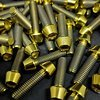 Ti-Suspension FOX - Pinch Bolts TITAN gold M5x18 Achsschrauben NEU