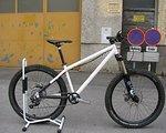 NS Bikes NS Surge/ Core Custom