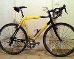 Poison Querfeldein Rennrad Cyclocrosser