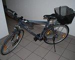 Trekkingbike Strato 928