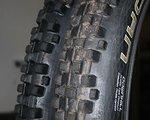 Schwalbe Dirty Dan Reifen 2 Stück
