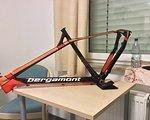 Bergamont Revox Carbon 9.4 29 in L