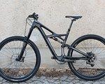 Specialized Enduro Expert Carbon 29 Größe M Bike 2014