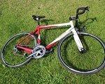 Trek /LeMond TREK Buenos Aires CARBON Ultegra TOP!!!!