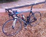 Bergamont Dolce Team Carbon Rennrad carbon 2013 Dt Swiss 1850 , WCS, Sram Force