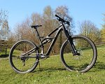 Specialized Enduro Black Pearl 29 Large