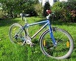 Univega Alpina Racelite 500 14,5 Zoll 37cm Kinderbike MTB