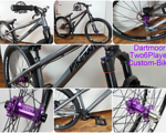 "Dartmoor 26"" Player Custom 9,8 kg Dirt/Street Bike Rock Shox Pike DJ,HOPE,Spank,Shimano,Chromag"