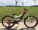Specialized SX Slopestyle US Modell