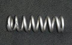 Rcs Titan Feder 300er, ID: 138-063-300