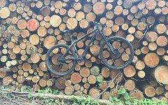 NS Bikes Eccentric 650B