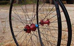 Radsporttechnik Müller Laufradsatz Tune King Kong (rot) BOR XMD 333 Sapim CX Ray 1350g Twentyniner 29