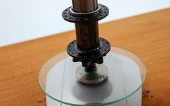Tune Kong MTB Hinterradnabe 32 Loch Disc only inkl.Titanfreilauf