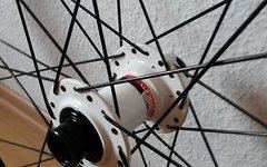 Rocky Mountain Wheeltech / Alexrims DP 20 / 29 Zoll