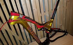"Specialized Troy Lee Stumpjumper FSR EVO Carbon 29"" M Rahmen"