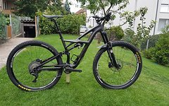 Specialized Enduro S-Works 29