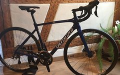 Specialized Roubaix Comp Gr. 54 NEU