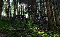 Kona Minxy Einsteiger Allrounder Bike Größe S