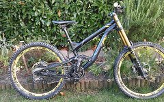 Polygon Collosus DHX