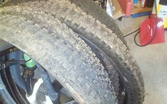 Schwalbe Magic Mary Hans Dampf Maxxis Ardent Ibex Onza