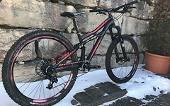Specialized Enduro SX Gr.L Custom Aufbau