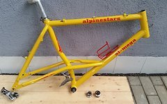 Alpinestars AlMega custom mit Teilen