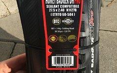 Kenda Honey Badger DH Pro DTC SCT Faltreifen