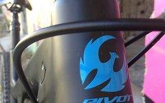 Pivot Firebird Large Schwarz