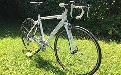 Merida Road Ride wie NEU - Shimano - Carbon