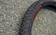 Specialized The Captain S-Works 29 x 2.0