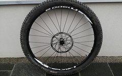 """DT Swiss Spline X1900 Vorderrad 29"""""""