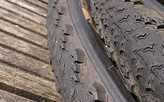 Bontrager Team Issue 29x1.90