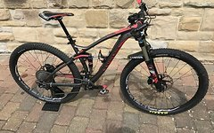 "Canyon Nerve AL M 29"" 2015"