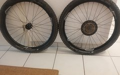 Giant PAM-2 Disc Laufrad-Satz, Sunrace 11-46,Tubeless,Schwalbe Hans Dampf