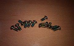 Bremsscheibenschrauben gold 12x M5 x 11mm Torx