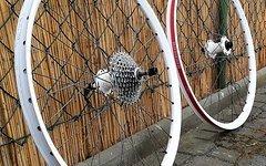 Sixpack Laufradsätze und weitere Fahrradteile