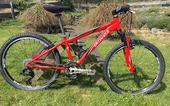 Specialized Hotrock Custom Made