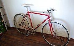 Peugeot Singlespeed Bike Rondeneur Fixie Halbrenner