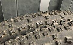Schwalbe Rapid Rob Reifen in 27,5 x 2,25 (2 Stück)