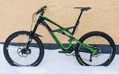 Specialized S-Works Enduro Expert Carbon schwarz/grün Größe L