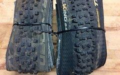 Continental Trail King 29x2.2 und Schwalbe Dirty Dan 29x1.8
